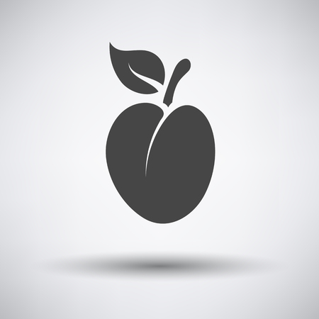 drupe: Plum icon on gray background with round shadow. Vector illustration.