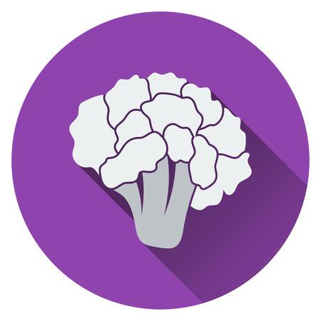 cauliflower: Cauliflower icon. Flat design. Vector illustration.