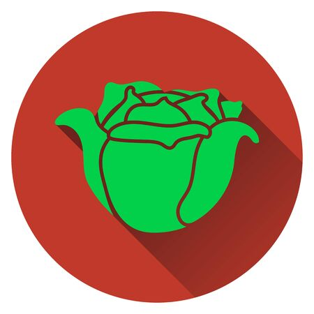 salad: Cabbage icon. Flat design. Vector illustration.