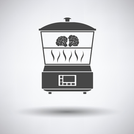 steam cooker: Kitchen steam cooker icon on gray background with round shadow. Vector illustration.