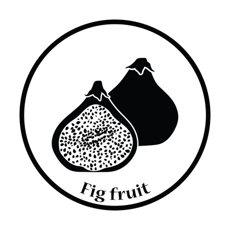 fig: Icon of Fig fruit. Thin circle design. Vector illustration.
