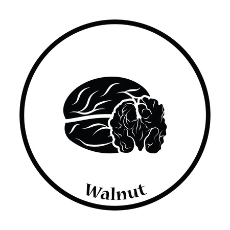walnut: Walnut icon. Thin circle design. Vector illustration. Illustration