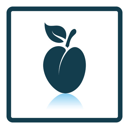 drupe: Icon of Plum . Shadow reflection design. Vector illustration. Illustration