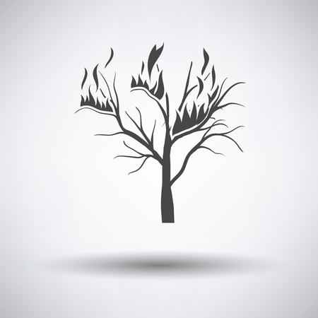 Wildfire icon on gray background with round shadow. Vector illustration. Illustration