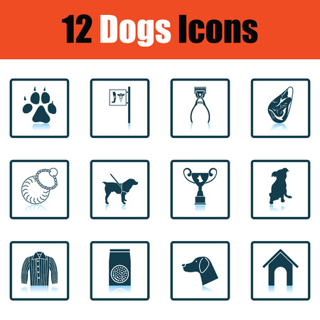 shearer: Set of dog breeding icons. Shadow reflection design. Vector illustration. Illustration