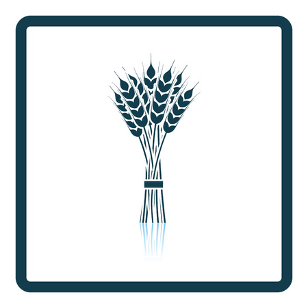 stalk: Wheat icon. Shadow reflection design. Vector illustration.