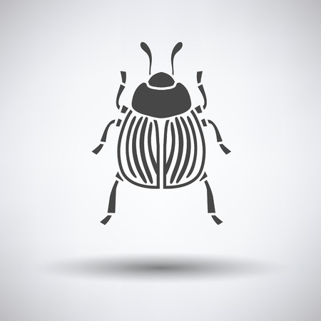 Colorado beetle icon on gray background with round shadow. Vector illustration.
