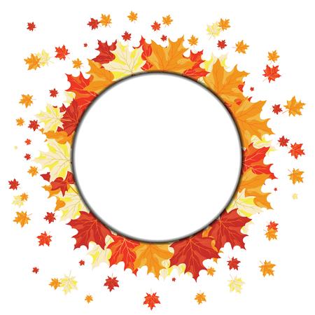 Autunno foglie di acero di sfondo. Illustrazione vettoriale con trasparenza. EPS10. Vettoriali