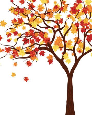 Autumn Kopie-Space-Frame mit Ahorn-Blätter