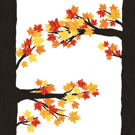 balanced: Autumn  Frame With Maple Leaves on Branches of Tree  Over White Background. Elegant Design with Text Space and Ideal Balanced Colors. Vector Illustration.