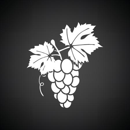 white grape: Grape icon. Black background with white. Vector illustration.