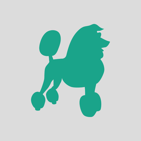 Poodle icon. Gray background with green. Vector illustration.