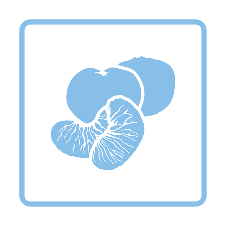 mandarin: Mandarin icon. Blue frame design. Vector illustration. Illustration