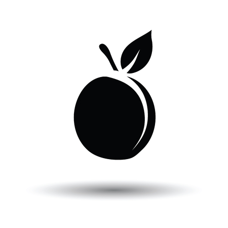 drupe: Peach icon. White background with shadow design. Vector illustration. Illustration