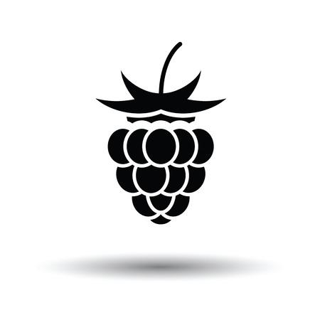 raspberry: Raspberry icon. White background with shadow design. Vector illustration. Illustration