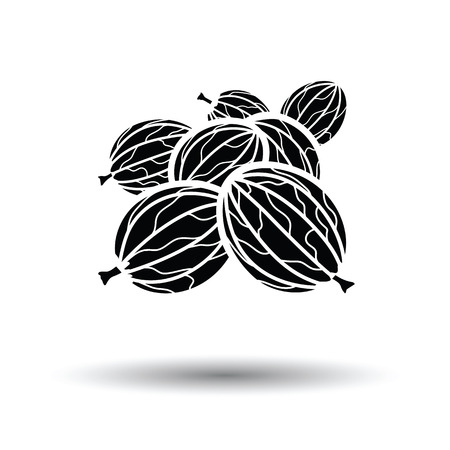gooseberry bush: Gooseberry icon. White background with shadow design. Vector illustration.