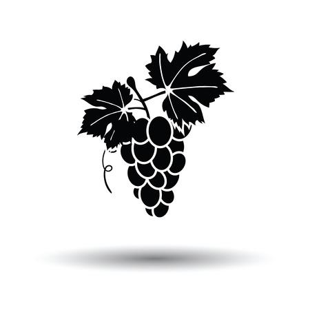 white grape: Grape icon. White background with shadow design. Vector illustration.