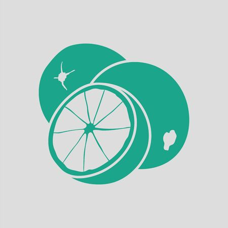 rinds: Orange icon. Gray background with green. Vector illustration.