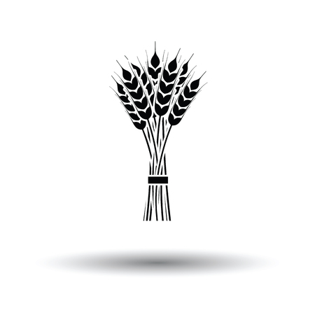 grain fields: Wheat icon. White background with shadow design. Vector illustration. Illustration