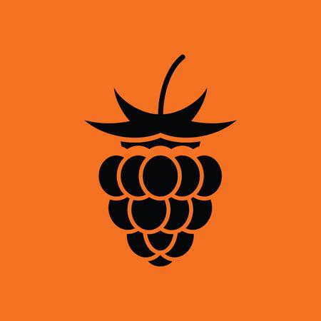 Raspberry icon. Orange background with black. Vector illustration. Illustration
