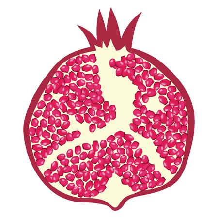 Flat design icon of Pomegranate in ui colors. Vector illustration. Illustration