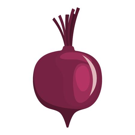 Beetroot  icon. Flat color design. Vector illustration. Stock fotó - 93703411