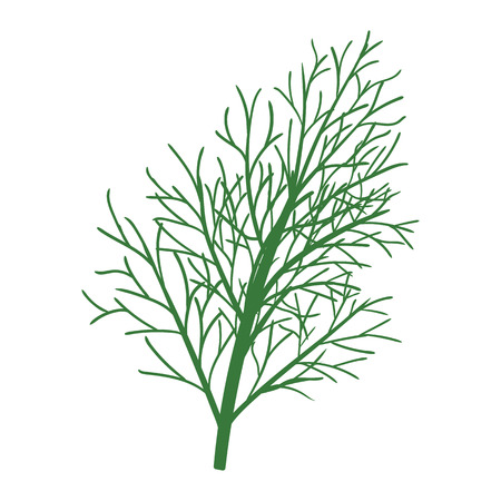 Dill icon flat color design vector illustration.