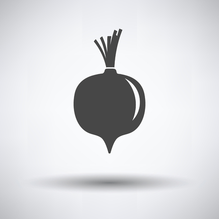 Beetroot  icon on gray background, round shadow. Vector illustration.
