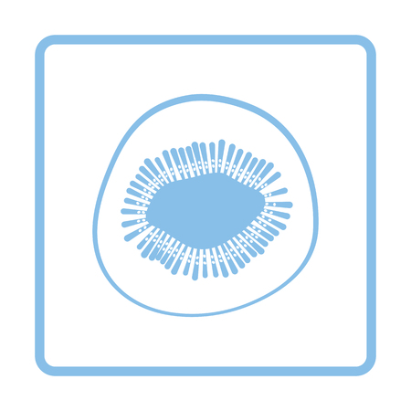 Icon of Kiwi. Blue frame design. Vector illustration.