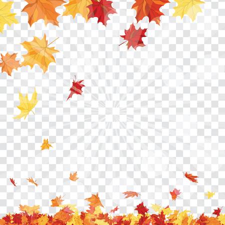 Cadre d'automne avec la chute des feuilles d'érable sur fond de grille de transparence (alpha). Illustration vectorielle.