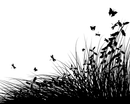 Summer Meadow Background With Butterflies. Vector Illustration.