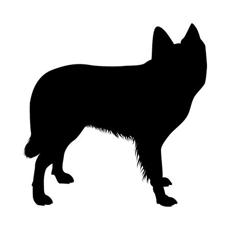 Dutch Sheep Dog Silhouette. Smooth Vector Illustration.