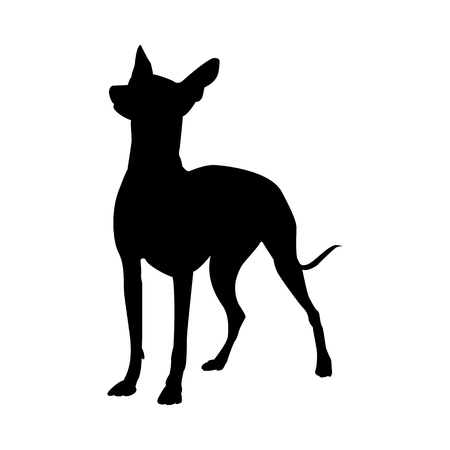 Mexican Naked Dog Silhouette. Smooth Vector Illustration. Stock Illustratie