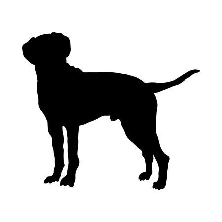 Dalmatian Dog Silhouette. Smooth Vector Illustration.