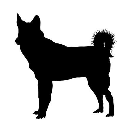 Husky Dog Silhouette. Smooth Vector Illustration.  イラスト・ベクター素材