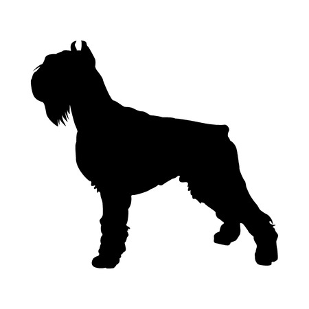 Shnauzer Dog Silhouette. Smooth Vector Illustration.