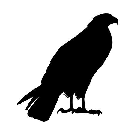 Bird Silhouette. Vector Illustration.