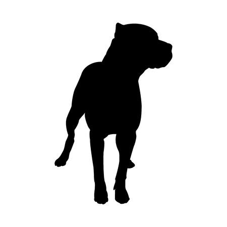 Pitbull-Terrier-Hundeschattenbild. Glatte Vektor-Illustration.