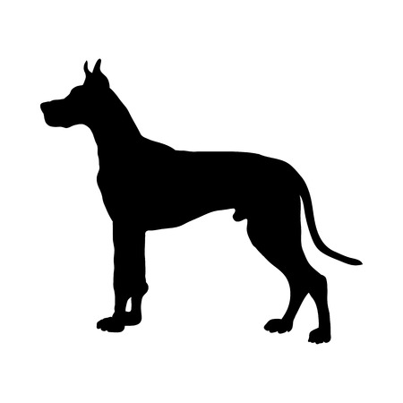 Great Dane Dog Silhouette. Smooth Vector Illustration.