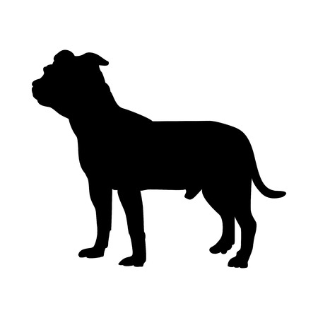 Staffordshire Terrier Dog Silhouette. Smooth Vector Illustration. Çizim