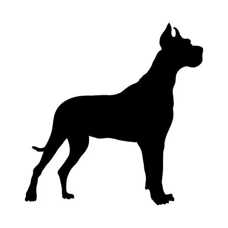 German Great Dane Dog Silhouette. Smooth Vector Illustration.