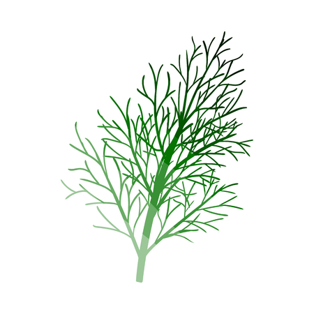 Dill Icon. Flat Color Ladder Design. Vector Illustration.