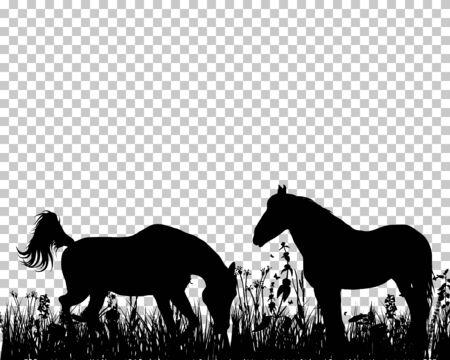 Sagoma di cavallo sull'erba con sfondo griglia di trasparenza. Illustrazione di vettore. Vettoriali