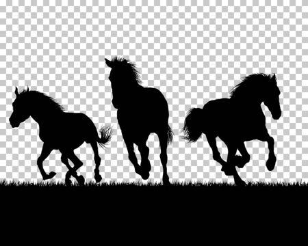 Silueta de caballo sobre hierba con fondo de cuadrícula de transparencia. Ilustración de vector. Ilustración de vector