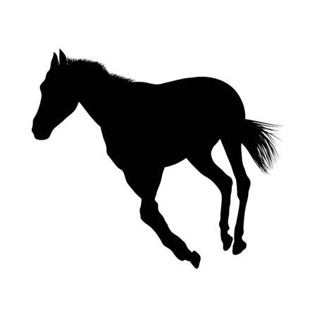 Sagoma di cavallo. Liscio altamente dettagliato. Illustrazione di vettore. Vettoriali