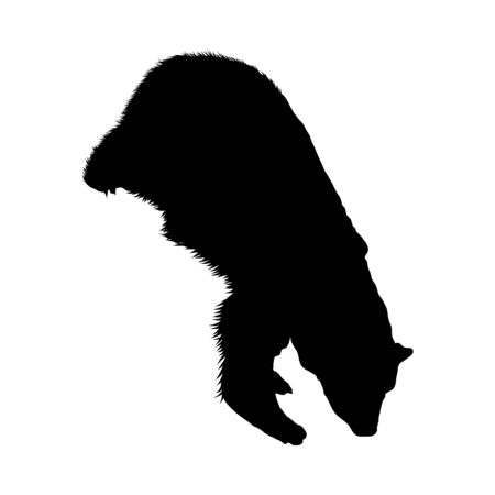 Polar Bear Silhouette. Highly Detailed Smooth Design. Vector Illustration. Stock Illustratie