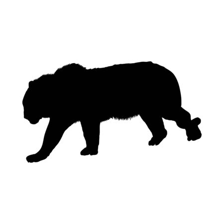 Tiger Silhouette. Highly Detailed Smooth Design. Vector Illustration.