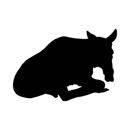 Donkey Silhouette. Highly Detailed Smooth Design. Vector Illustration.
