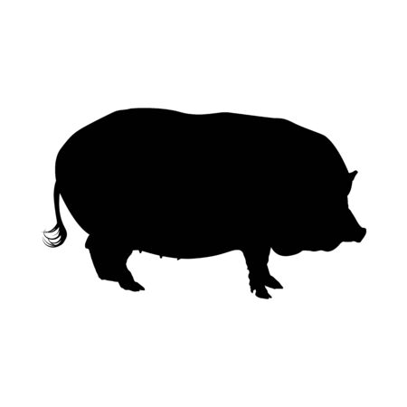 Pig Silhouette. Highly Detailed Smooth Design. Vector Illustration. Illustration
