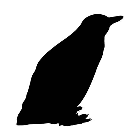 Penguin Silhouette. Highly Detailed Smooth Design. Vector Illustration.